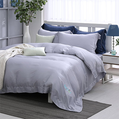 LASOL睡眠屋-100%奧地利天絲 特大兩用被床包四件組清晨微光