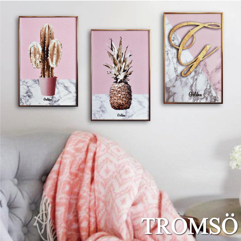 TROMSO 北歐生活版畫有框畫-粉紅金鑽WA59(三幅一組)