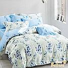 Betrise北歐情意  雙人 3M專利天絲吸濕排汗八件式鋪棉兩用被床罩組