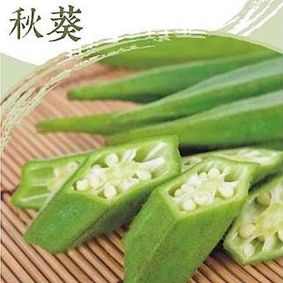 北灣 IQF鮮凍秋葵(500g/包)