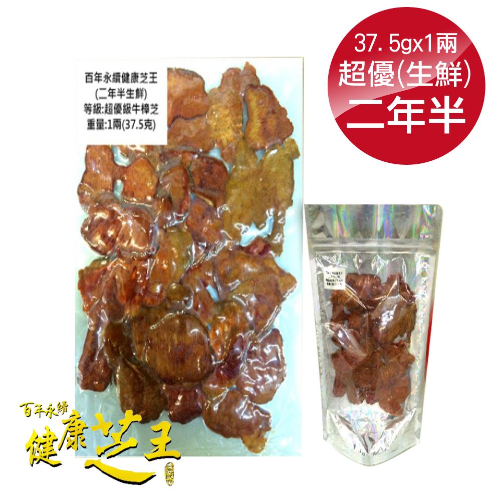百年永續健康芝王 (兩年半) 超優級牛樟芝/菇 生鮮品 37.5g x1兩