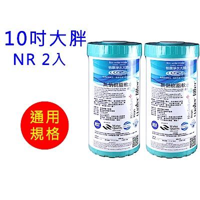 怡康 10吋大胖標準水垢抑制軟水濾心2支