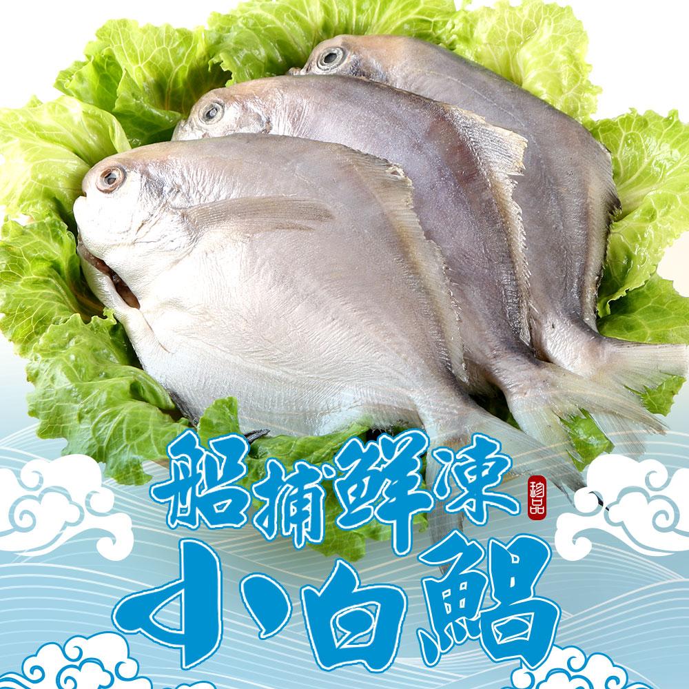 【愛上新鮮】船捕鮮凍小白鯧32隻組(4隻裝/400g±10%/包)