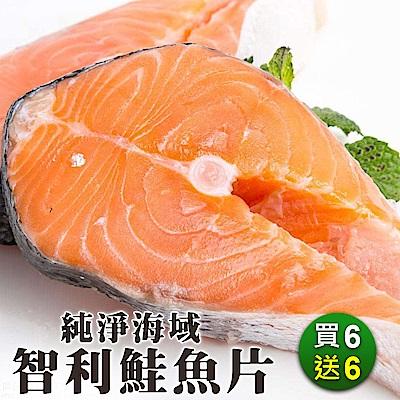 買6送6【海陸管家】鮮嫩智利鮭魚片 共12片(每片約100g)