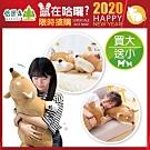 Beroso 倍麗森 買大送小-日系柔軟柴柴犬抱枕玩偶-建議情人實用聖誕交換禮物