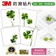 3M 防滑貼片-植物(6片) product thumbnail 1