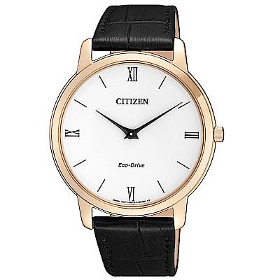 CITIZEN星辰 Eco-Drive 光動能紳士薄型手錶/AR1133-23A