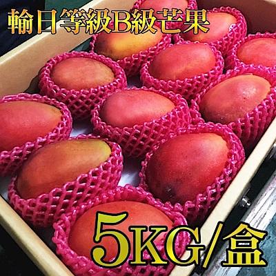 青果社台中分社 輸日等級B級芒果(5kg/盒)(2盒)