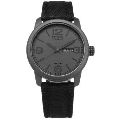 CITIZEN 軍風霸氣 礦石強化玻璃 日期 防水100米 帆布皮革手錶-灰x黑/42mm