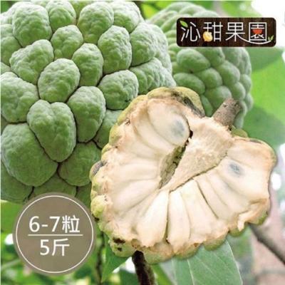 沁甜果園SSN‧台東大目釋迦(6-7顆裝/5台斤)