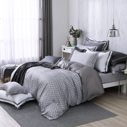 OLIVIA  德瑞克 加大雙人床包被套四件組 300織天絲TM萊賽爾 台灣製