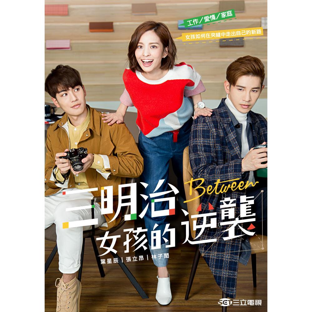 三明治女孩的逆襲(共18集) DVD