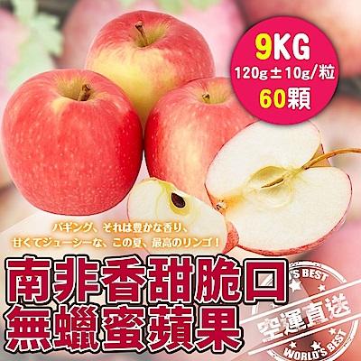 【天天果園】南非無蠟蜜蘋果(每顆約120g) x9kg(約60顆)