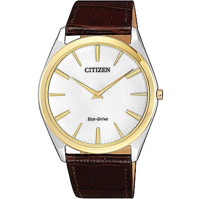 CITIZEN星辰 光動能 內斂薄型設計腕錶(AR3074-03A)-銀x金框/ 39mm
