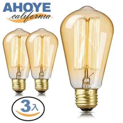 AHOYE (3入組) 復古愛迪生鎢絲燈泡
