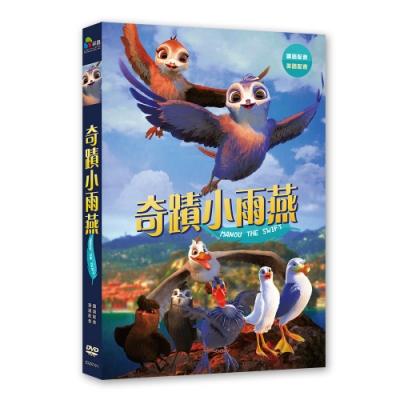 奇蹟小雨燕 DVD