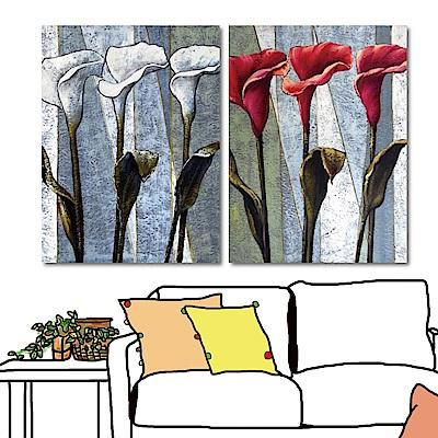 24mama掛畫 兩聯式直幅 藝術無框畫-紅白海芋花30x40cm