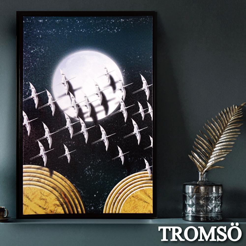 TROMSO 北歐時代風尚有框畫-星辰圓月WA182