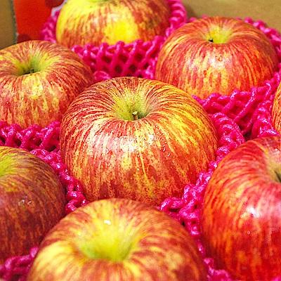 【鮮果日誌】智利富士蘋果(6入禮盒裝)