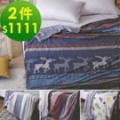 【雙11】北歐風法蘭絨保暖毯被2件$1111