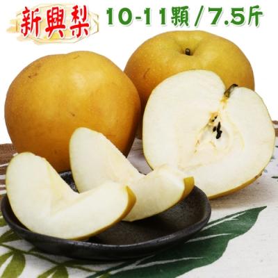 愛蜜果 卓蘭新興梨10-11顆箱裝(約7.5斤/盒)水梨 梨子