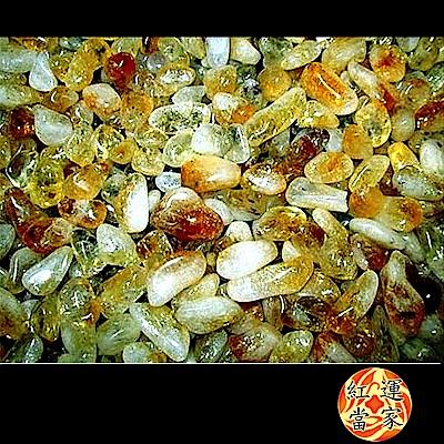 紅運當家 天然招財黃水晶碎石(粗) 淨重600公克