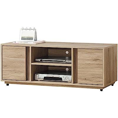 綠活居 伊琳時尚4尺美型電視櫃/視聽櫃-121x40x47cm免組