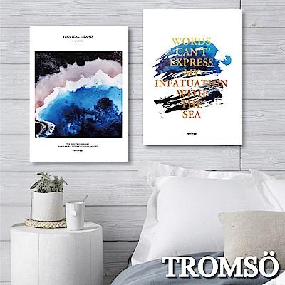 TROMSO 時尚無框畫-暢藍海洋