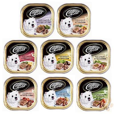 西莎Cesar 主廚風味餐盒系列 100g 48盒組