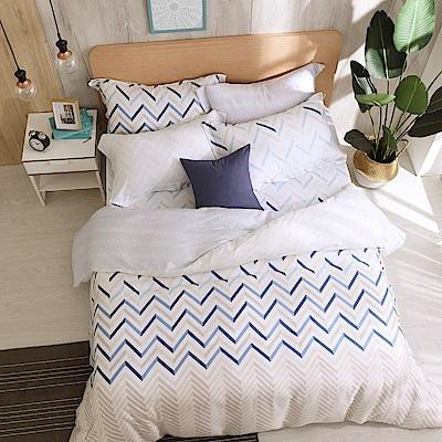 鴻宇 雙人加大床包兩用被套組 天絲300織 奧斯卡 台灣製