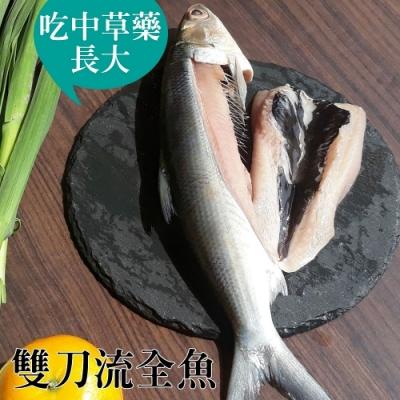 台江漁人港‧草本雙刀流全魚(12兩/隻,共二隻)