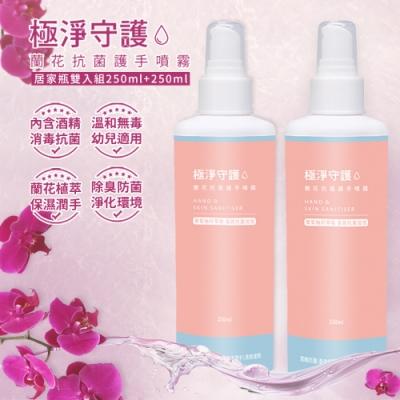 極淨守護 蘭花抗菌乾洗手噴霧-居家防護瓶250ml(2入組)