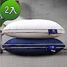 [好康]Hilton 希爾頓 五星級純棉立體銀離子抑菌獨立筒枕 2入