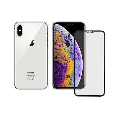 LUCCIDA Apple iPhone XS / X 霧面冷雕玻璃貼【3D滿版】