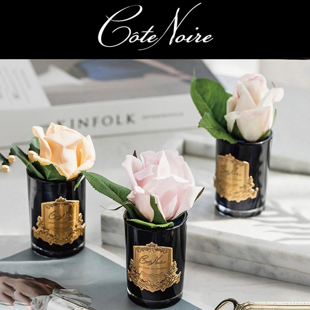 法國 Cote Noire 蔻特蘭   玫瑰香氛花〔單朵-小〕
