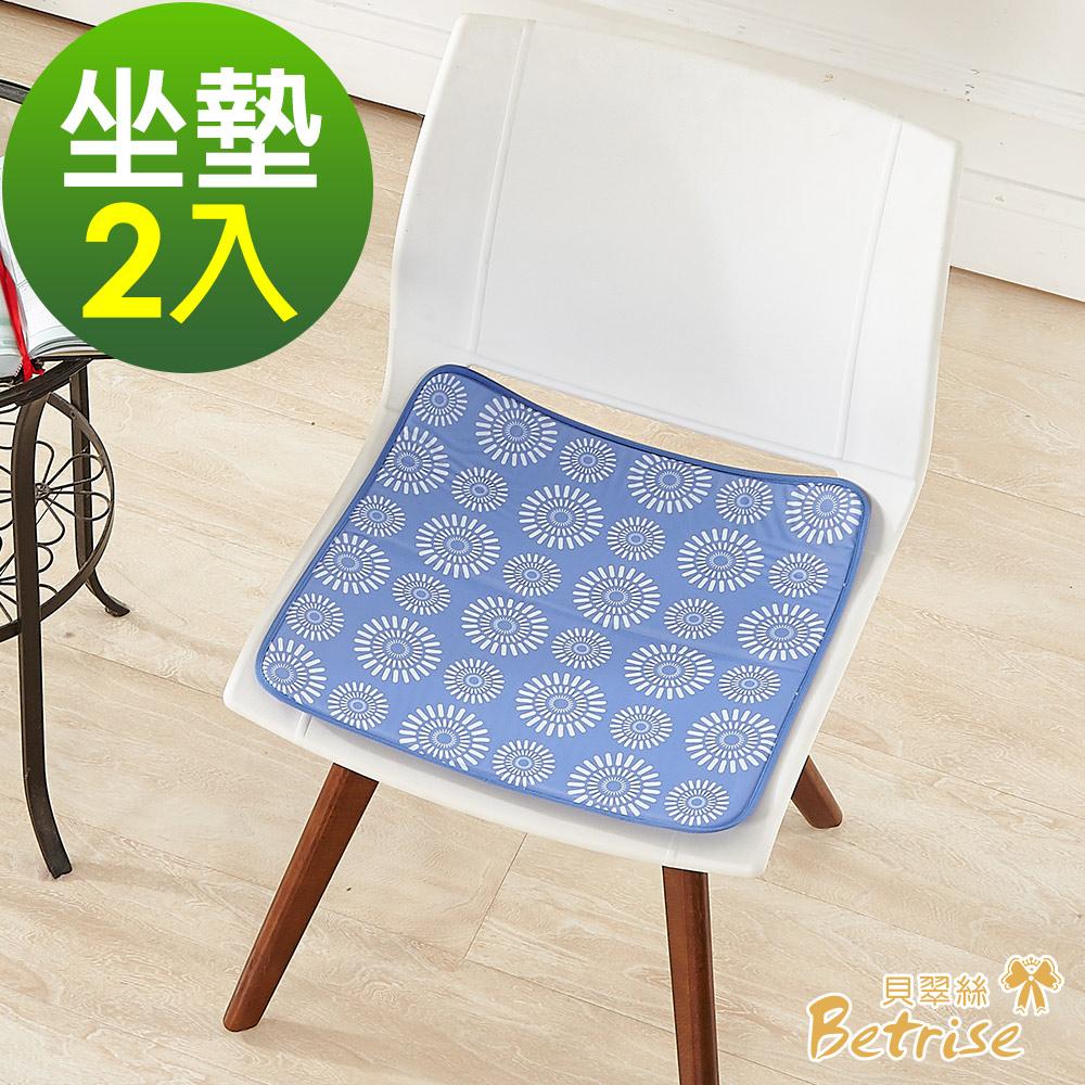 Betrise日本熱銷固態低反發抗菌凝膠持久冰涼墊(超值二入組)