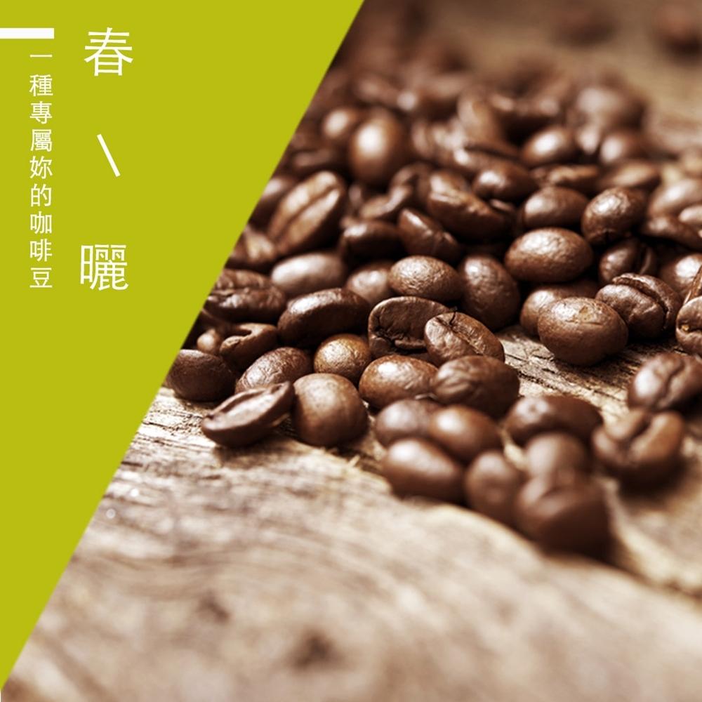 【精品級金杯咖啡豆】春曬咖啡豆(450g)
