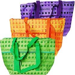 《EXCELSA》野餐保冷袋(水果30L)
