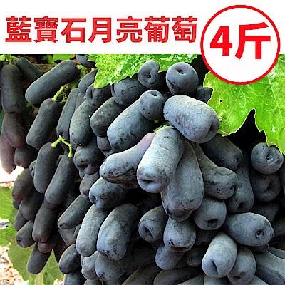 [甜露露]智利藍寶石月亮葡萄4斤禮盒(2-3包)