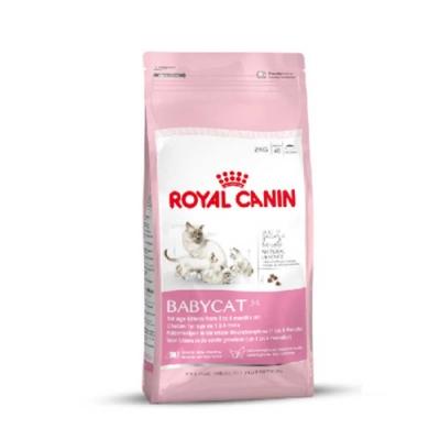 法國皇家 BC34離乳貓0.4kg(離乳後1-4個月)
