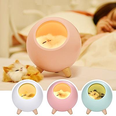 半島良品 萌貓小寵屋USB充電LED小夜燈 (3款)
