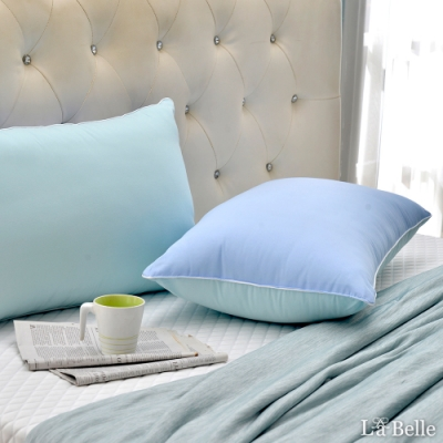 (買一送一)義大利La Belle 日本防蹣抗菌夢幻馬卡龍可水洗舒柔枕-三色可選