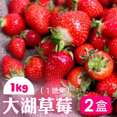 家購網嚴選 鮮豔欲滴大湖香水草莓1公斤x2盒(1號果)