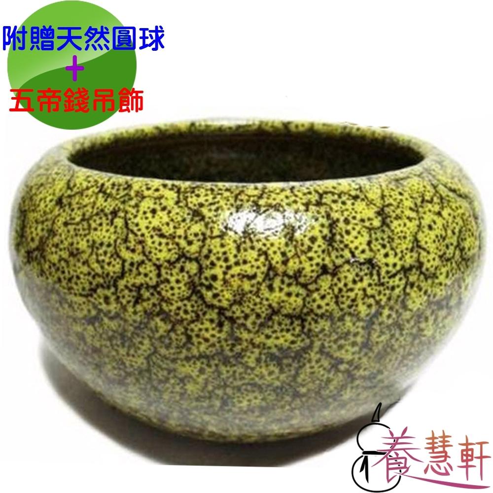 養慧軒 鶯歌陶瓷 黃天目釉(不含蓋) 招財大聚寶盆