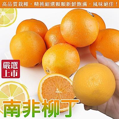 (買20送20) 【天天果園】南非無籽甜橙(柳丁)(共40顆,150g/顆)
