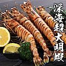 【海鮮王】深海野生超大明蝦 2盒組(8尾/450g±10%/盒)