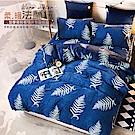 A-ONE 法蘭絨雙人加大兩用被毯床包四件組 合版FC