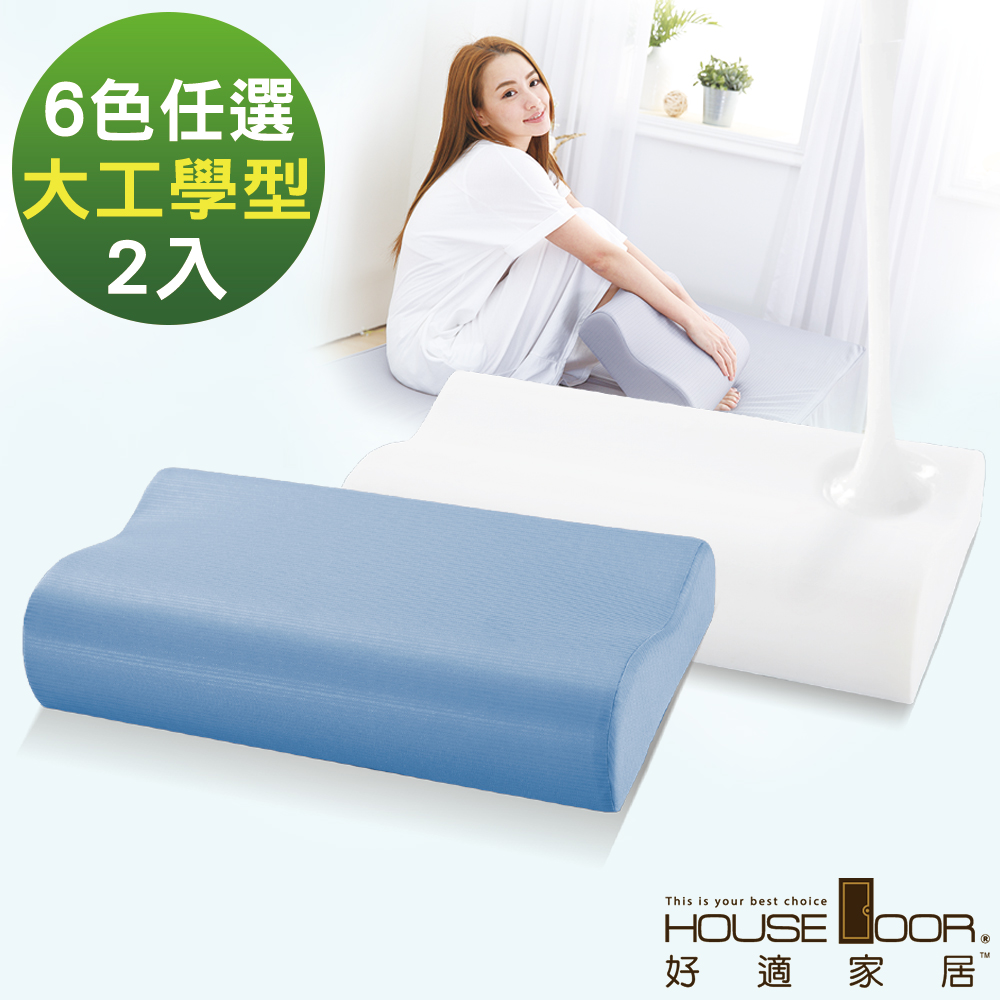 House Door 歐美熱銷款 大和防蹣抗菌表布 工學型釋壓記憶枕-大尺寸2入
