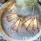 TROMSO-LED玫瑰金鑽石10燈串