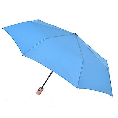 2mm 清新淡雅通勤自動開收傘 (藍色)